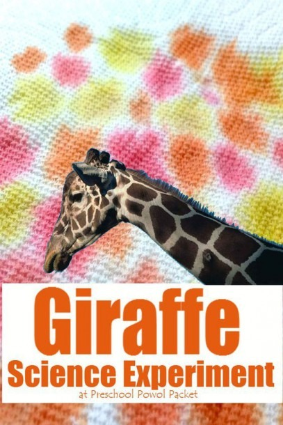 Crazy Cool Giraffe Science Experiment