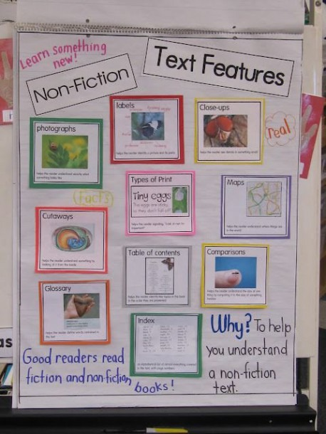 A Nonfiction Anchor Chart And Resources  This Is A Kindergarten