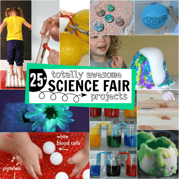25+ Totally Awesome Science Fair Project Ideas For Kids