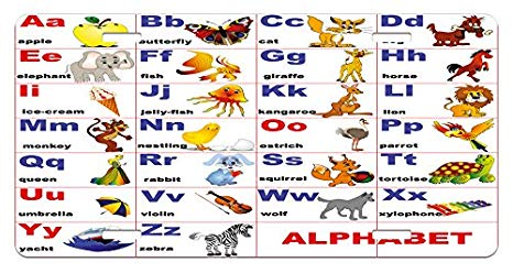 Amazon Com  Ambesonne Educational License Plate, Animals Placed On