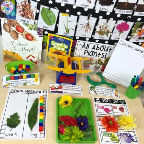 Spring Activities And Centers For Preschool, Pre