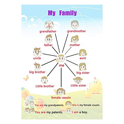 Buy Homyl Kids Fun Early Learning Educational Posters Chart For