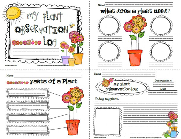 Preschool Plant Journals Template