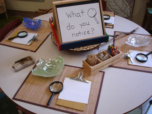 The 25+ Best Science Table Ideas On Ideas For Kindergarten