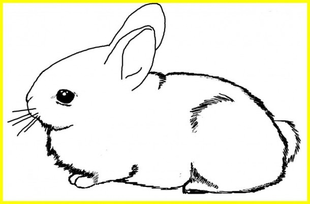 Coloring  Bunny Print Out Coloring Inviting Rabbit For
