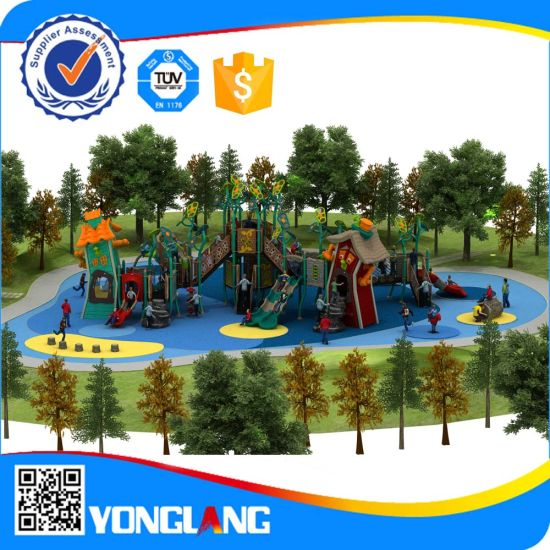 China Outdoor Novelty Design Security Playground Equipment (yl