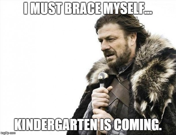 Brace Yourselves X Is Coming Meme