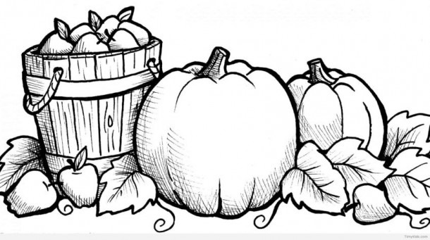 Coloring  Pumpkin Coloring Pages Free Sheets For Preschoolers