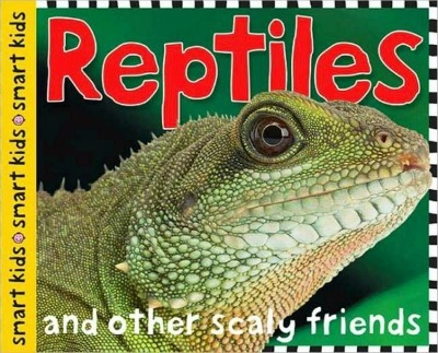 Reptile Books For Preschoolers