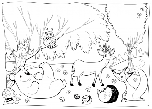 Detailed Coloring Page – Forest Creatures
