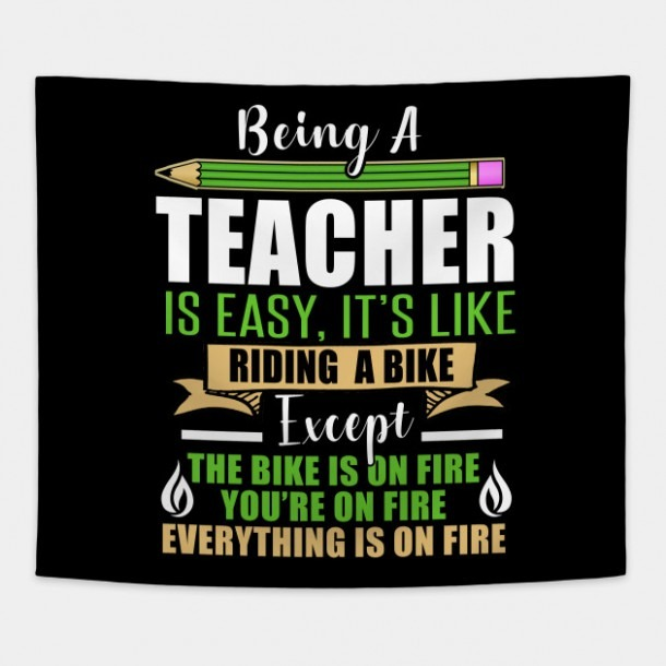 Funny Educators T