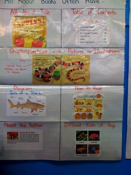 Sample Anchor Chart For All