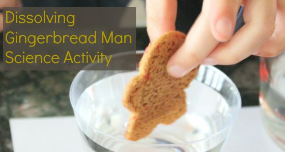 Gingerbread Man Science Activity For Preschool
