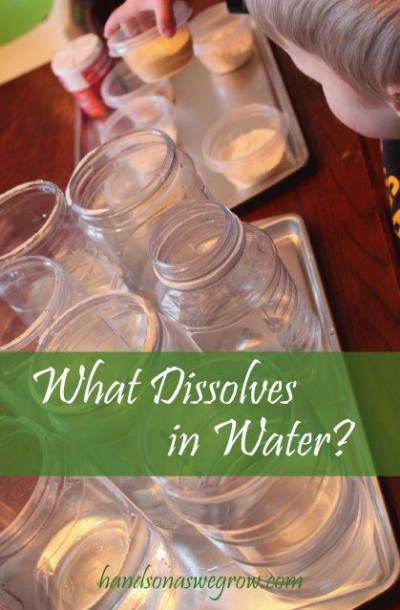 Learn What Dissolves In Water With A Preschool Science Experiment