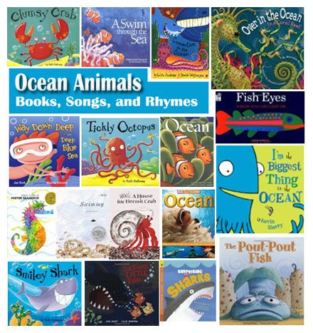 Ocean Animal Book Suggestions, And Ocean Animals Rhymes And Song
