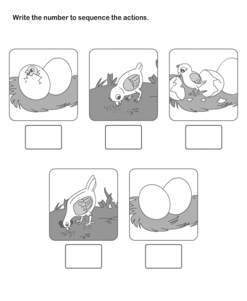 Picture Sequence Worksheet 14