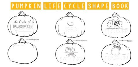 Pumpkin Preschool Printables