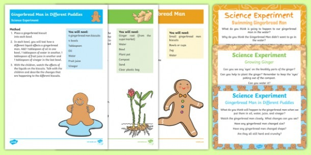 Eyfs The Gingerbread Man Science Experiments Resource Pack