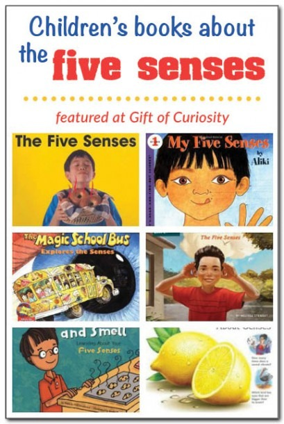 Books About The Five Senses For Kids