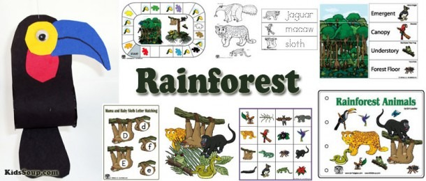 The Rainforest Preschool Activities And Crafts